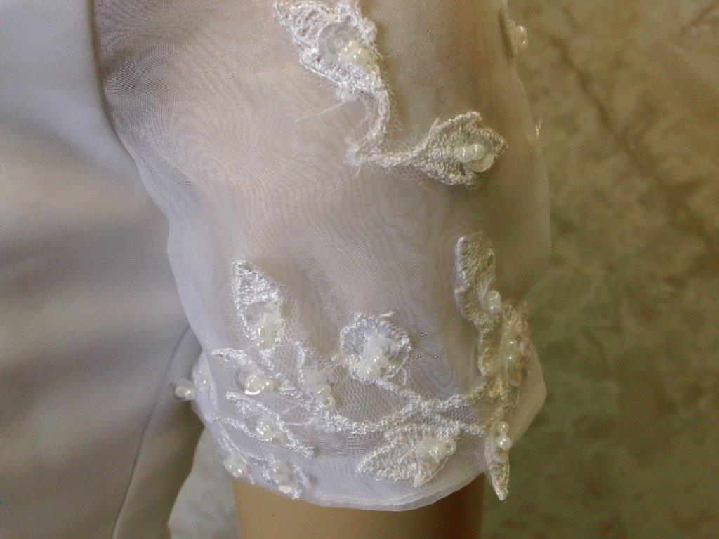 sheer sleeves with beaded applique