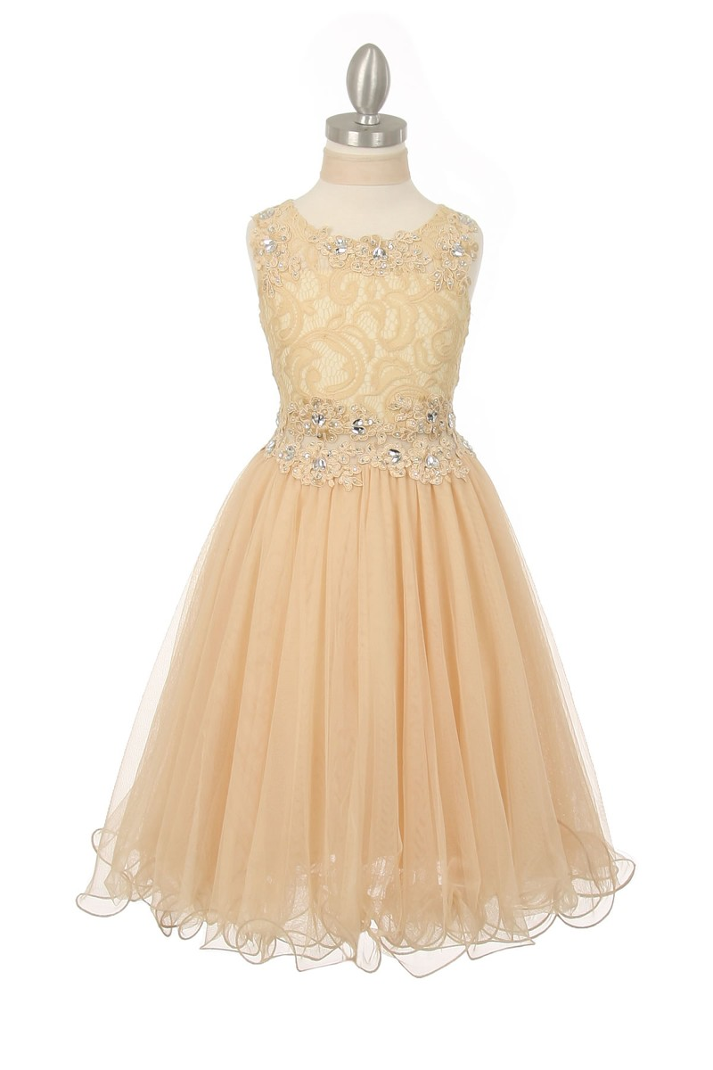 champagne little girls fancy dresses