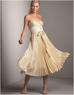 Fan pleated skirt for dancing