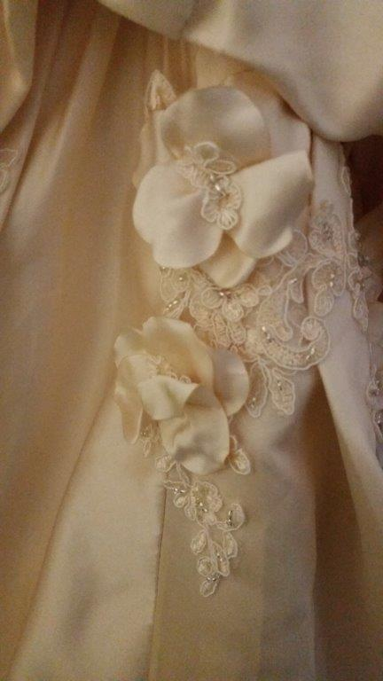champagne applique wedding gown