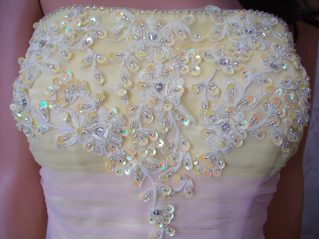 beaded applique bodice