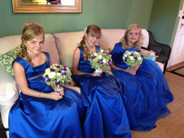 Royal Blue Flower Girl dresses in 3 assorted styles