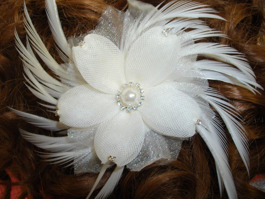 Bridal feather hair combs
